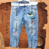 Fashion Design and Decent Ladies′ Jeans with Cloth Patch (HDLJ0011)