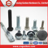 Fastener Hex Bolt / Carriage Bolt / Flange Bolt / T Head Bolt / Guardrail Bolt / U Bolt / Stud Bolt /Anchor Bolt