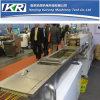Tse-40 Best Machine PP PE Color Masterbatch Production Line