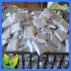 Waterproof and Breathable Aloe Vera Mattress Protector