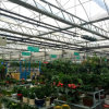 35 Years Guarantee Cost-Effective Glass Greenhouse for Flowers