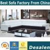 Best Quality L Shape Living Room Furniture Leather Sofa (A34)