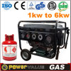 Household China 6kw 6kVA Natural Gas Silent Geneartor for Sale