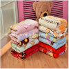 Double Thick Cloud Blanket Child Blanket Baby Winter Essential