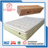 Pillow Top Roll in Box Pocket Spring Mattress