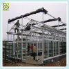 Galvanized Steel Structure Glass Cover Green House