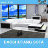 Top Leather White Modern Sofa (F101)