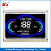 Customerized Va-LCD Type Monochrome Small Size LCD Screen Display