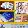 Color Brochure, Instruction, Booklet Custom Printed