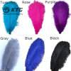 Colourful Ostrich Hair, Dyed Feather Ostrich Plumes for Carnival Costumes Decoration