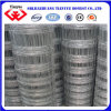 Hot Dipped Galvanized Filed Fence (TYB-0060)