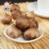 Prevent Cancer Treatment Natural Pure Herbal Medicine Black Garlic Powder 300g
