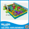 Galvanized Steel Pipe Indoor Playground (QL-3058D)