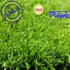 a++ Garden Landscaping Artificial Grass/Pets