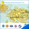 Dietary Supplement Ganoderma Lucidum Capsule