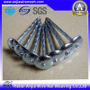 Roofing Nail with Umbrella Head in Electro Galvanized