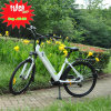 36V 250W 10ah Hidden Battery City Electric Bicycle