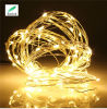 Flexible Copper Wire LED String Light with 5V USB Charge