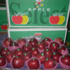 Exporting Standard Packing Fresh Red Apple, Huaniu Apple