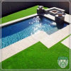 Natural Looking Artificial Synthetic Turf for Swimming Pool