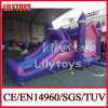 China Inflatable Air Bouncer, New Design Inflatable Bouncy Castle for Sale (J-BC-008)