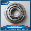 Taper Roller Bearing High Quality 31300