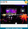 Hot-Sale Event Stage Applied Inflatable Star Decorations
