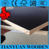 12mm Film Faced Plywood Price/12mm Plywood Waterproof
