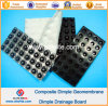 HDPE Dimple Drainage Board with Geotextile