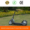 Best Selling Folding Electric Scooters, Electric Kick Scooter for Wholesale
