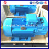 High Torque Crane Motor for Metallurgical Machinery