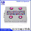 1000W Full Spectrum LED Grow Light for Indoor Plants Veg and Flower, Garden Greenhouse Hydroponic Plant Growing Lights (12-Band 10W/LED)