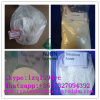 Raw Steroid Powders Testosterone Acetate for Muscle Building 1045-69-8