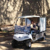 2 Seate Electric Dining Cart in Park