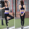 Women Quickly Dry Yoga Pants Gym Wear Suit Athletic Wear