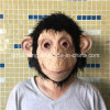 Halloween Adult Chimp Adult Head Mask