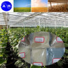 Amino Acid Chelate Minerals for Crop Growth