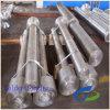 Polished Forging Tp316 Stainless Steel Nut Shaft