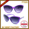F7220 Vogue Products Ladies Style Fox Eye Shaped Frames Sunglasses
