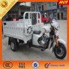 Ducar Chongqing Factory 3 Wheel Motorcycle for Sale