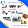 100-1000kg/H Ginger Powder Ginger Flake Making Machine