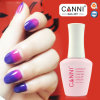 50423h, Nail Art Canni Factory Supply 2015 New Product Nail Art Design 15ml Chameleon Paint /Temperature Change Color Gel 12 Colors