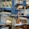 Marble & Granite Stone Bathroom/Kitchen Vanity Top/Countertop