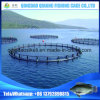 Offshore Fish Cage Floating, Aquaculture Cages, Fish Farming Cages