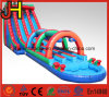 Three Line Inflatable Water Slide for Kids and Adults