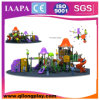 New Dersign Outdoor Playground Amusement Equipment (QL--055)