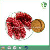 Food&Beverage Additive Schisandra Berry Extract, Schisandrin a& Schizandrins, Schisandrin B