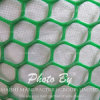 Diamond Hole Shape Plastic Extruded Mesh