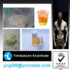 Bodybuilding supplement steroids trenbolone enanthate safe shipment CAS 10161-33-8