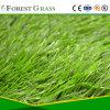 Soccer Grass Sport Grass Football Grass (SB)
